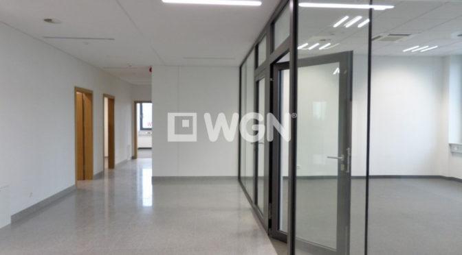 przestronne, przeszklone powierzchnie w biurze do wynajmu Wrocław Stare Miasto