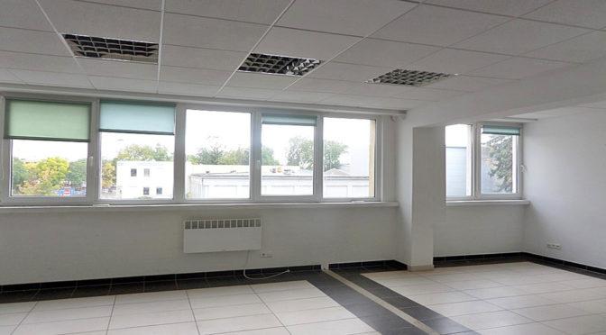 słoneczne, przestronne wnętrze biura do wynajmu Wrocław